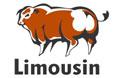 Associação Brasileira de Limousin