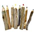 Lápis Ecológico Colorido